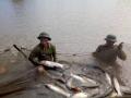 Quỳnh Lưu đánh giá mô hình nuôi cá trắm, chép dai giòn