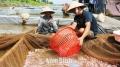 Nam Định: Phát triển thủy sản tương xứng lợi thế sẵn có