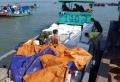 Hàng tấn cá giống Trung Quốc ồ ạt