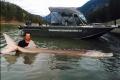 Choáng với trọng lượng khủng của cá tầm 'quái vật' dài 3,5 m