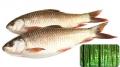 Ethanol từ cây tre giúp cá chống lại mầm bệnh
