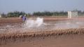 Thông tin quan trắc môi trường nước Trà Vinh tháng 1 năm 2018