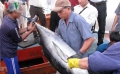Bình Định xây dựng thương hiệu cá ngừ từ chinh phục thị trường Nhật