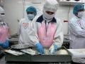 Vasep dự báo xuất khẩu tôm sang Mỹ sẽ tăng vào cuối năm