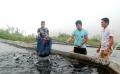 Hợp tác xã Thủy Lâm (Bát Xát): Xuất bán 10 tấn cá hồi thương phẩm