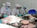 Úc và Canada cảnh báo chất lượng thuỷ sản Việt Nam