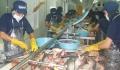Cần đổi mới sản phẩm thủy sản xuất sang Pháp