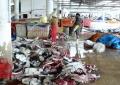 Việt Nam-Thái Lan tăng cường hợp tác thủy hải sản