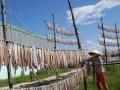 Cần nâng chất và phát triển nghề làm sản phẩm thủy sản