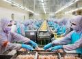 Cà Mau nâng cao sức cạnh tranh các mặt hàng thủy sản xuất khẩu