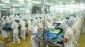 Chế biến thủy sản truy xuất nguồn gốc ở Hà Tĩnh
