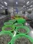 Tiêu chuẩn nước thải hại nhà máy thủy sản