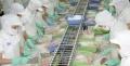 Vĩnh Hoàn: Lãi sau thuế quý I ước đạt 40 tỷ