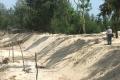 Pháp luật Kỷ luật 8 cán bộ 'cuỗm' đất rừng nuôi tôm