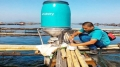 Thiết bị lập trình thời gian ăn cho cá hút vốn đầu tư triệu USD