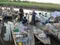 Cận tết, đệ nhất cá da trơn tăng giá