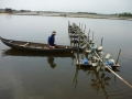 Sử dụng thuốc, hóa chất an toàn trong nuôi trồng thủy sản