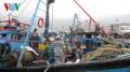 Ngư dân miền Trung vẫn kiên cường ra khơi