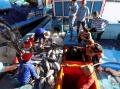 Chuyến biển đầu tiên trong chuỗi khai thác, tiêu thụ cá ngừ sọc dưa thắng lợi