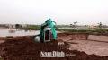 Phát triển kinh tế nhờ chuyển đổi vùng lúa năng suất thấp sang nuôi tôm
