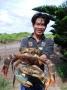 Mô hình nuôi cua biển ở Bạc Liêu