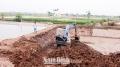 Nam Định: Hiệu quả mô hình nuôi xen canh thủy sản nước ngọt với mặn lợ