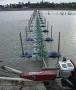 Ngành thủy sản xin xả thải riêng