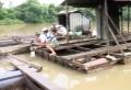 TP.Biên Hòa: Nhiều hộ nuôi cá bè chưa nhận tiền hỗ trợ di dời