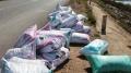 Nguy cơ lây lan dịch bệnh do vứt bỏ thủy sản chết ra môi trường