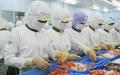 DN thủy sản kiến nghị Bộ Y tế tháo gỡ vướng mắc