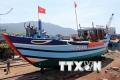 BIDV dành 3.000 tỷ đồng cho ngư dân vay đóng mới tàu cá