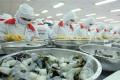 Trung Quốc tăng thu mua tôm Ấn Độ size lớn, đầy giá tăng