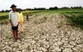 Lo ngại El Nino quay lại