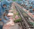25 DN XK thủy sản bị Nhật cảnh báo vi phạm an toàn thực phẩm