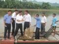 Tuyên Quang phát triển 6 loài cá đặc sản