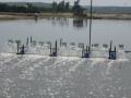 Chính phủ hỗ trợ Kiên Giang phòng, chống dịch bệnh thủy sản