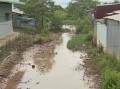 Bạc Liêu: Kênh thủy lợi bị bồi lấp, người dân không thể lấy nước nuôi
