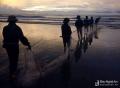 Độc đáo nghề kéo rùng bắt cá trên biển