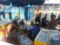 Đà Nẵng: Trúng đậm cá hố trắng, thu gần 300 triệu đồng/chuyến biển