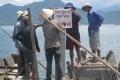 Huế: Tăng cường xây dựng, tái tạo các khu bảo vệ thủy sản