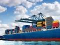 Cá tra nhập khẩu vào Hoa Kỳ bị kiểm tra 100% lô hàng từ 2/8