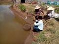 Trà Vinh: Quy định lịch nuôi thủy sản