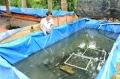 Cần Thơ: Kỹ sư 9X thu hàng trăm triệu từ nuôi lươn