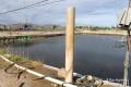 Nông dân Nghệ An đầu tư 1,7 tỷ đồng đưa nước biển vào nuôi tôm