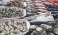 Lấy mẫu hàng ngày để đánh giá an toàn tại khu vực biển có cá chết