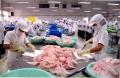 Doanh nghiệp Việt Nam phản đối Mỹ áp thuế chống bán phá giá cá tra