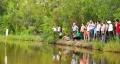 Giải pháp nâng cao tính bền vững của mô hình canh tác tôm - lúa vùng đồng bằng sông Cửu Long