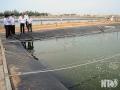 Ninh Thuận: Nuôi trồng thủy sản khả quan sau dịch bệnh