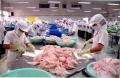 Tổng quan thị trường thủy sản tháng 5/2017