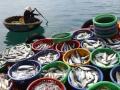 Viết cho ngày nghề cá Việt Nam